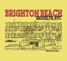 Brighton Beach Avenue Storefronts by Daniel Gallegos
