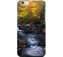 Autumn Swirls iPhone Case/Skin