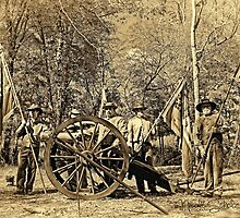 Confederate Artillery Battery by Nicole  Scholz