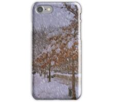 Never ending winter iPhone Case/Skin