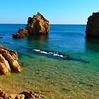 The Shores of the Algarve by Janone