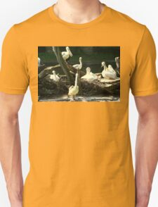 Group Of Pelicans Nesting T-Shirt