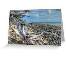 St Andrews Beach at Yamacraw on Eastern Nassau in The Bahamas Greeting Card