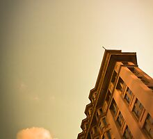 Flat Iron Building by verve62