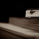 Book Love Affair. by verve62