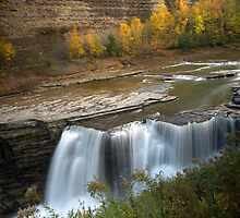 Lower Falls in Autumn by Jeff Palm Photography