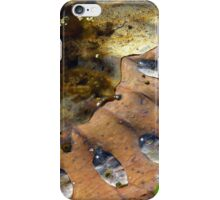 Lotus Leaf In Decay iPhone Case/Skin