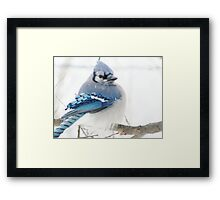 Winter Blue Puff Framed Print
