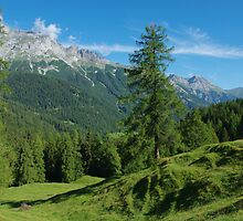 Scenery near Vättis, Switzerland by Claudio Del Luongo