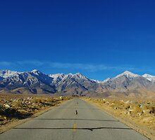 Road to Sierra Nevada, California by Claudio Del Luongo