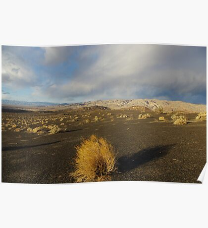 Near Ubehebe Crater, Death Valley Poster