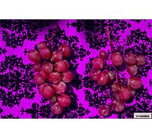 Grape Collection-2 Photographic Print