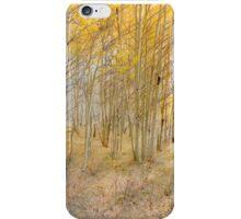 4069 iPhone Case/Skin