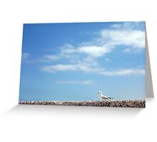 No Means No - Seagull - 14 12 12 Greeting Card