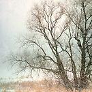 Winter Chill by KBritt
