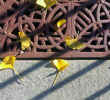 Grate and Ginko Leaves by Ethna Gillespie