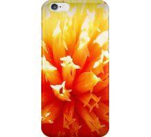Yellow And Orange Dahlia Flower iPhone Case/Skin