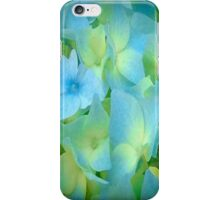 Blue And Yellow Hydrangea Flowers iPhone Case/Skin