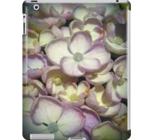 Pink And Yellow Hydrangea Flowers iPad Case/Skin