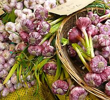 Garlic for Beginners: Saturday Market, Uzes, France by linfranca