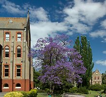 Abbotsford Convent by rjpmcmahon