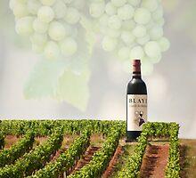 Wineyards  by Gouzelka