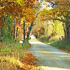 Country Lane i-Pad Case by ipadjohn