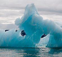 Iceberg by Caren della Cioppa