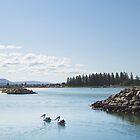 pelican lake... by geisha