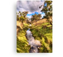 Water Source - Somewhere near Oberon NSW Australia - The HDR Experience Canvas Print