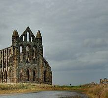 Whitby Abbey  by esartee