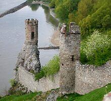 Castle Devin by Jasmina Kulik