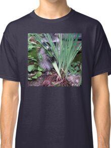 Peekaboo! Classic T-Shirt