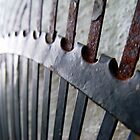 99/365 leaf rake by LouJay