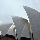opera house (1) by dan throsby