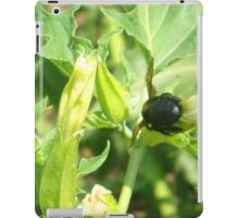 Black Bumblebee on Datura iPad Case/Skin
