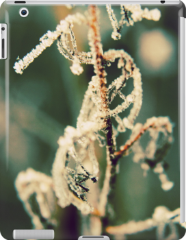A Touch of Frost by Sybille Sterk