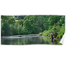 Fly Fishing on the River Wharfe Poster