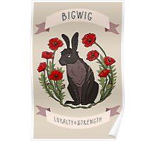 BIGWIG CARD VERSION Poster