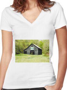 Kentucky Barn Quilt - Darting Minnows Women's Fitted V-Neck T-Shirt