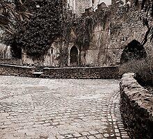 Malahide Castle grounds by Martina Fagan