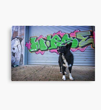 Graffiti Dog Canvas Print