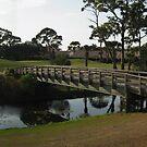 Bridge by sunsetrainbow