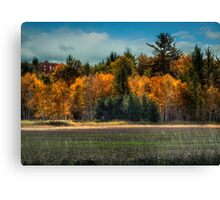 Wisconsin Autumn Canvas Print