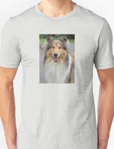 Smiling Collie T-Shirt
