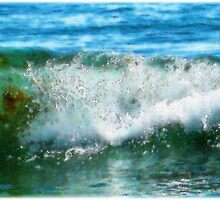 Ocean Wave by Roger Sampson