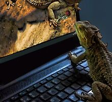 INTERNET DATING...CAN'T WAIT!!...IM MAKING MY WAY OUT TOO U..BEARDED LIZARDS ..ON THE INTERNET U CAN GET IT ALL... LOL.THATS AMORE!!.PICTURE,PILLOW,TOTE BAG,BOOKS ECT, by ✿✿ Bonita ✿✿ ђєℓℓσ