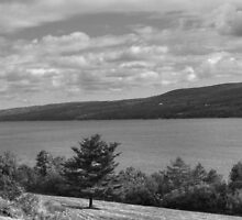 Seneca Lake (Humble Tribute to Ansel Adams) by Gene Walls