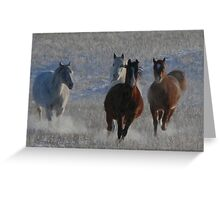 Horses running  Greeting Card
