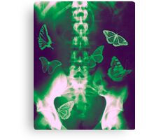 Butterflies in the stomach - x-ray  Canvas Print